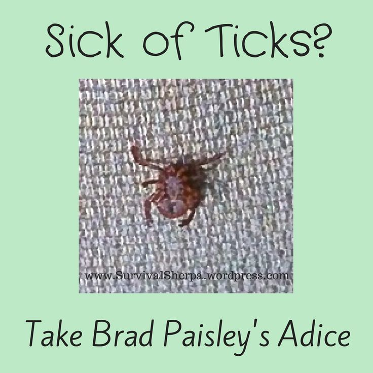 Sick of Ticks? Take Brad Paisley's Advice | Survival Sherpa