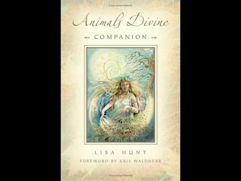 Animals Divine Tarot by Lisa Hunt: a card-by-card feature by Tarot Zamm. Winner of a 2006 Coalition of Visionary Resources (COVR) Award Ever present in art a...