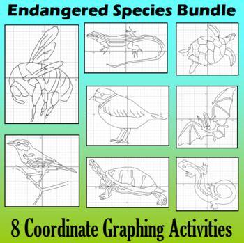 20 best endangered species coordinate graphing activities images endangered species bundle 8 coordinate graphing activities thecheapjerseys Images
