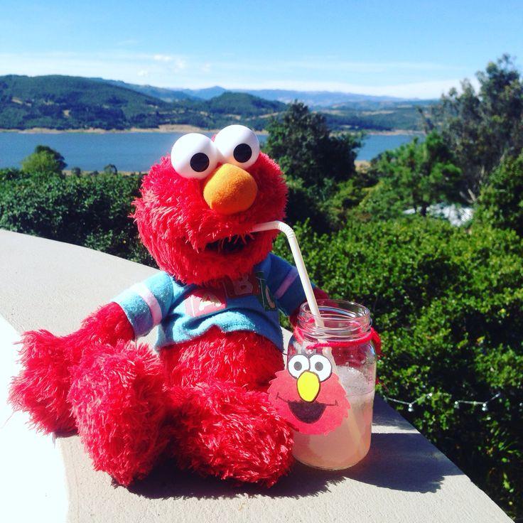 Elmo Gin & Tonic Raspberry Lemonade