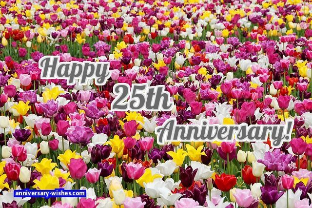 "25th anniversary wishes: Wish a ""Happy 25th Anniversary"" with this collection of 25th wedding anniversary wishes for parents, friends, partners with images."