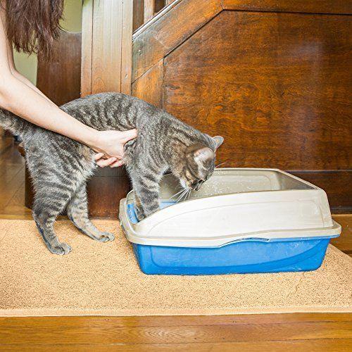 25+ Best Ideas About Cat Litter Mat On Pinterest
