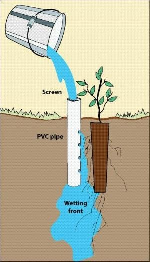 pvc pipe projects   Figure 10.136 - Deep pot irrigation uses an open-ended PVC pipe placed ... by audra