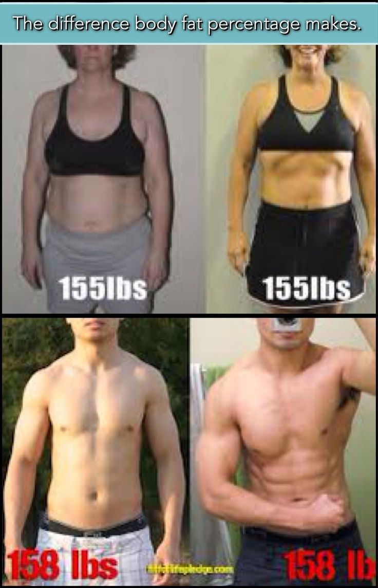 ideal body fat percentage to build muscle