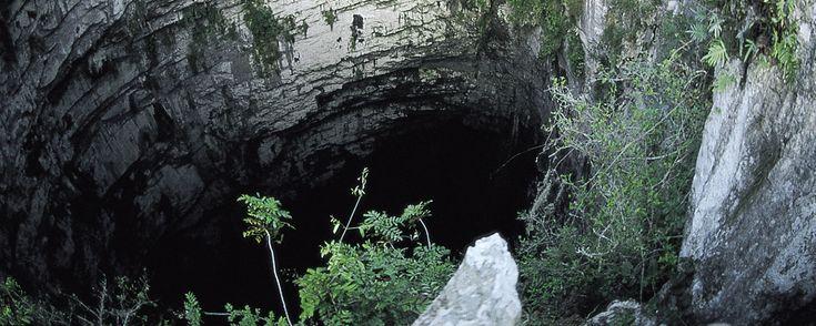 Inmerso en la Huasteca Potosina, el Sótano de las Golondrinas es el abismo natural más espectacular de México. Se trata de una enorme oquedad vertical de origen kárstico, formada por la erosión del agua durante millones de años en este suelo calizo. El lugar es un refugio natural de varias especies de aves, en especial de vencejos (comúnmente confundidos con las golondrinas, de ahí su nombre), así como de loros, cotorras de cueva y murciélagos.