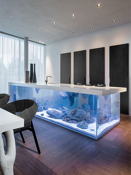 Modern kitchen with beautiful large aquarium designed by Robert Kolenik.