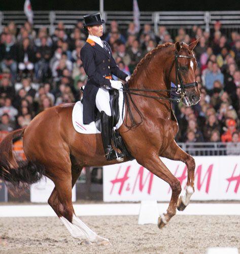 Adelinde Cornelissen on ParzivalI.  Netherlands