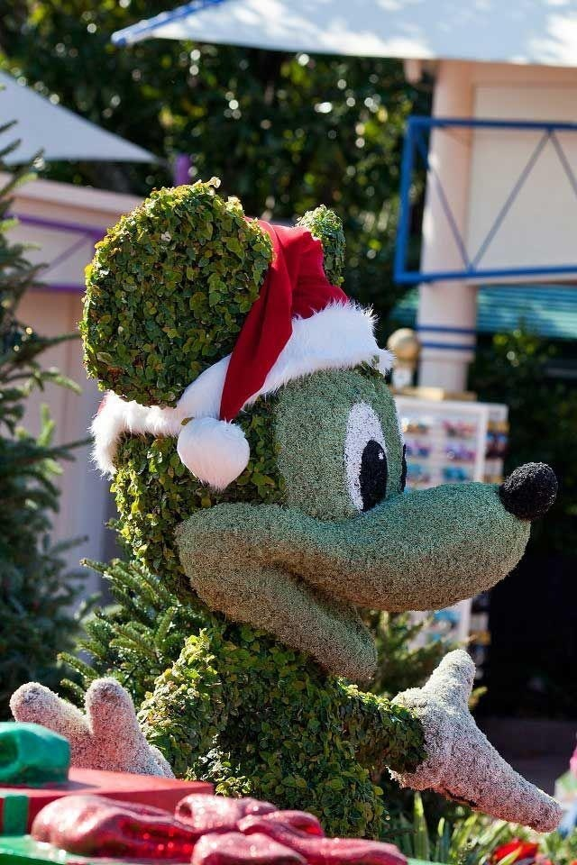 Topiary Mickey Mouse at Christmas