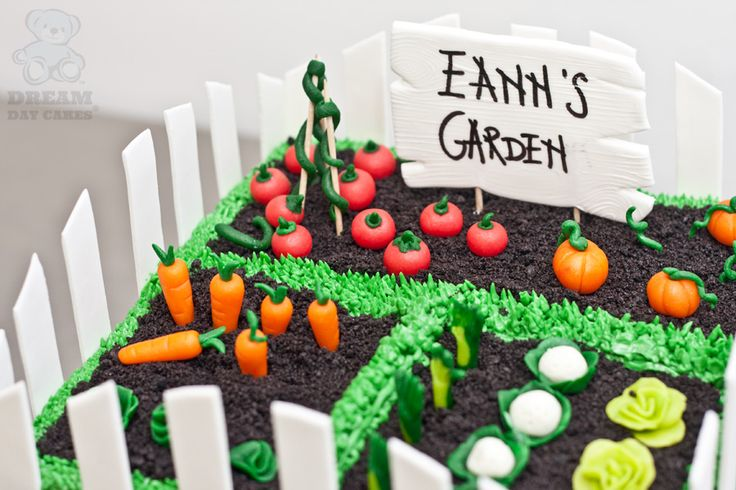 veggie garden signs | Vegetable Garden Cake. Gainesville Bakery. | Dream Day Cakes
