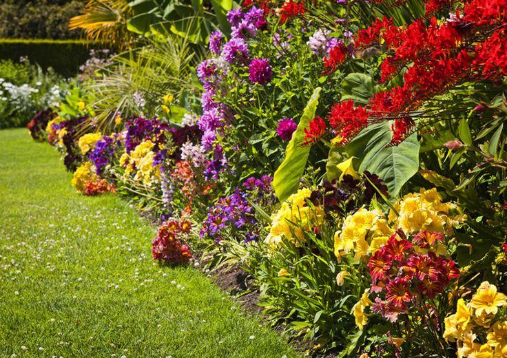 Kompozice rostlin při zakládání zahrad