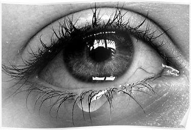 Pin On Eye Photography