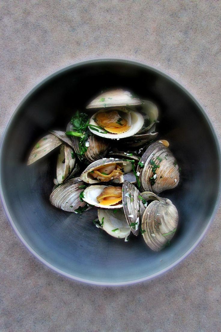 Vongole alla marinara con aglio e prezzemolo, antipasto perfetto