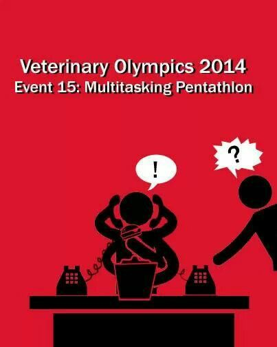Veterinary Olympics 2014