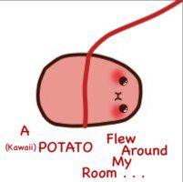 A (Kawaii) Potato Flew Around My Room . . .  XD