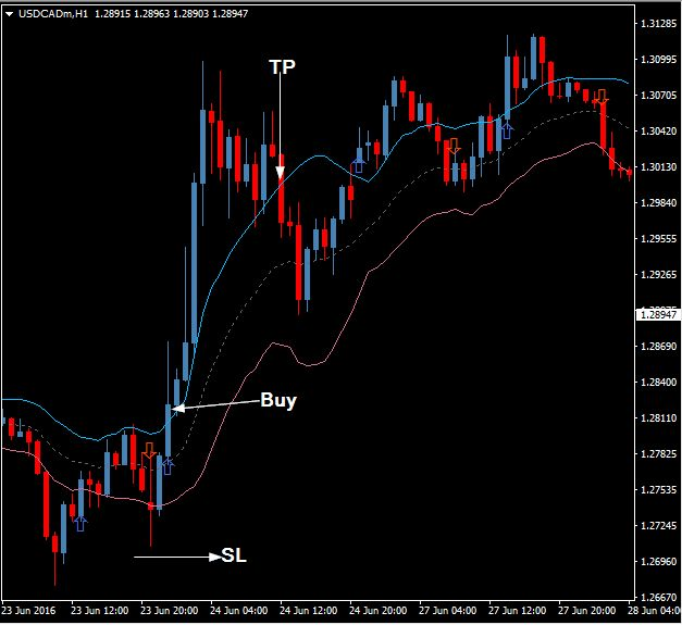 The macd 3 forex trading system 88