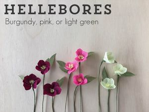 hellebores-paper-flowers.png
