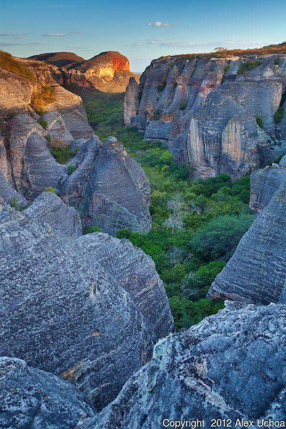 Baixao das Andorinhas, na regiao do circuito da Serra Vermelha, Parque Nacional da Serra da Capivara, Piaui