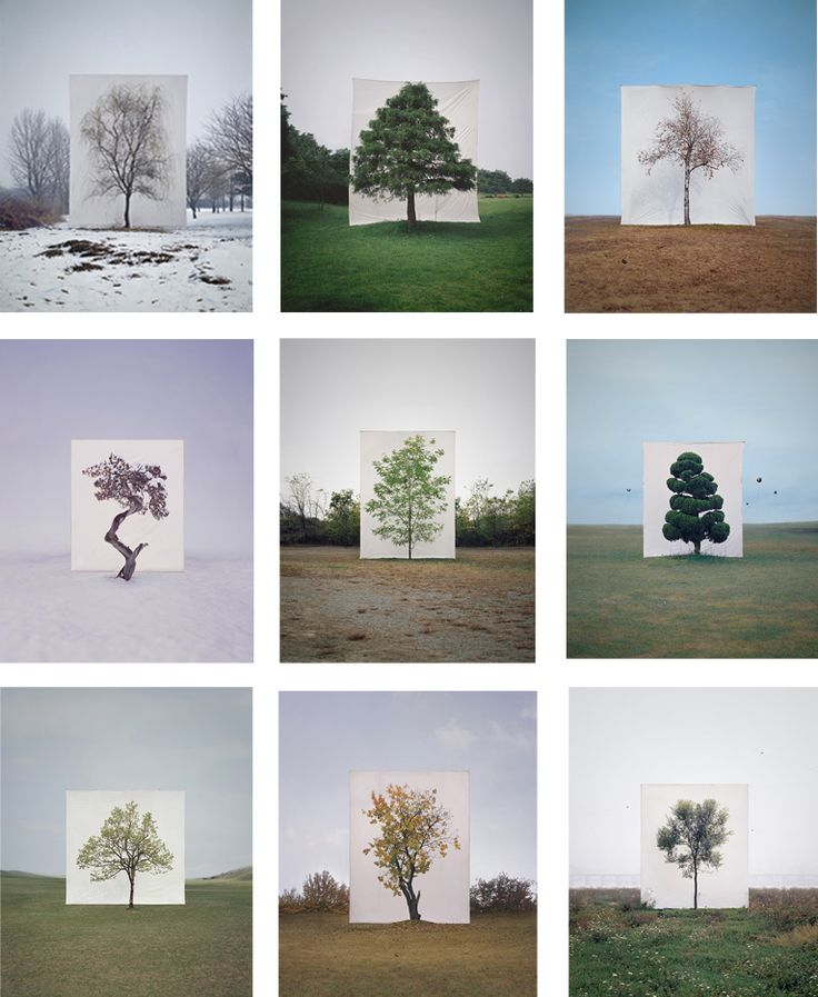 I like how in this typology different backgrounds are used in each image, however the tree over the top wasn't originally in the image which makes the piece look more effective and different from the other typologies that I have looked at.
