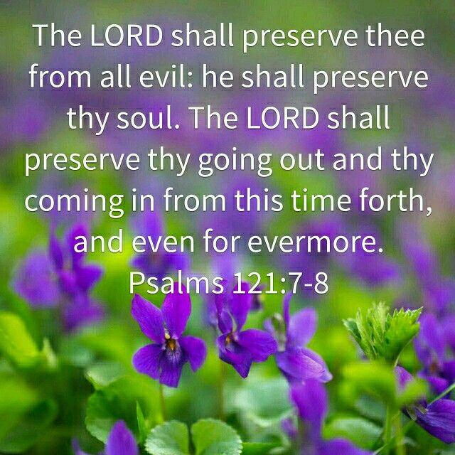 Psalms 121:7-8 KJV