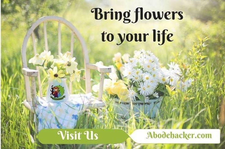 Bring flowers to your life. #plantsmakepeoplehappy #doplants #office #indoorplants #abodehacker #online_nursery #flowers www.abodehacker.com