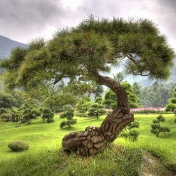 En Corée du Sud, le Parc National de Seoraksan