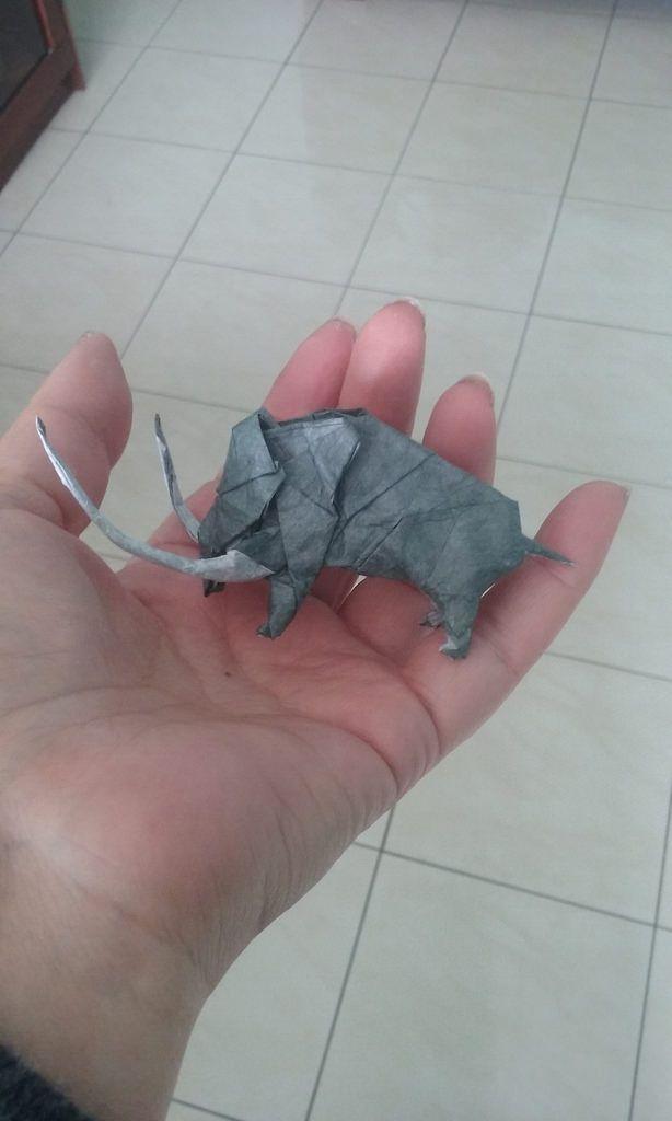 Mammoth - Noboru Miyajima  Thai unryu  tissue paper - 20x20cm by Carla Godoy