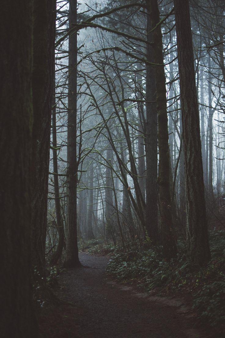 Foggy mornings in Bryant Woods OR. [OC] [40006000] #reddit