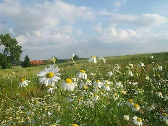 """""""a lato było piękne tego roku"""" ;-)"""