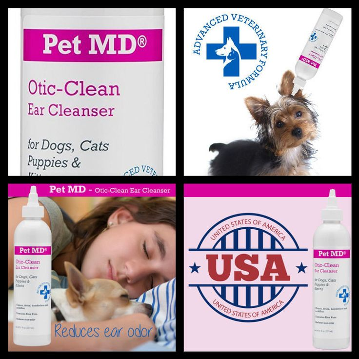 how to clean dog ears with vinegar