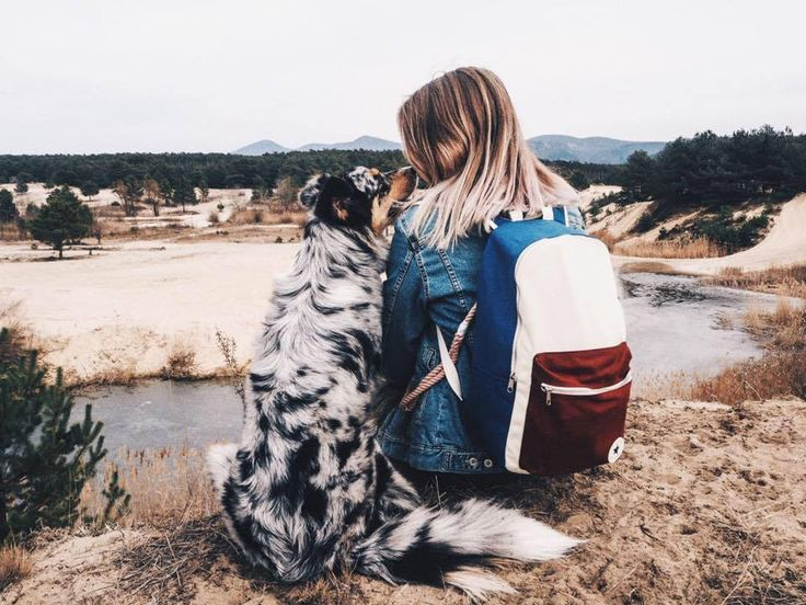 australian shepherd, Slovakia, hiking with dog, Paul Anka, puppygang.sk, wander dog, wanderlust, auo, puppy, dog