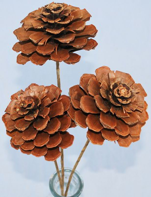 Pine cone roses stemmed or unstemmed christmas trees for How to paint pine cones for christmas