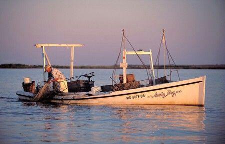 Small work boat | Chesapeake Bay | Smith island, Shrimp boat, Boat