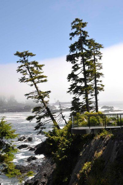 View from Black Rock Resort, Ucluelet B.C.