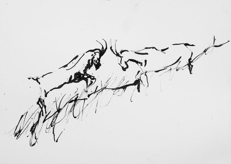 Goats Fighting, ink on paper