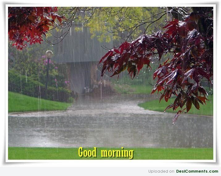 Good Morning Rainy Images: 1000+ Rainy Morning Quotes On Pinterest