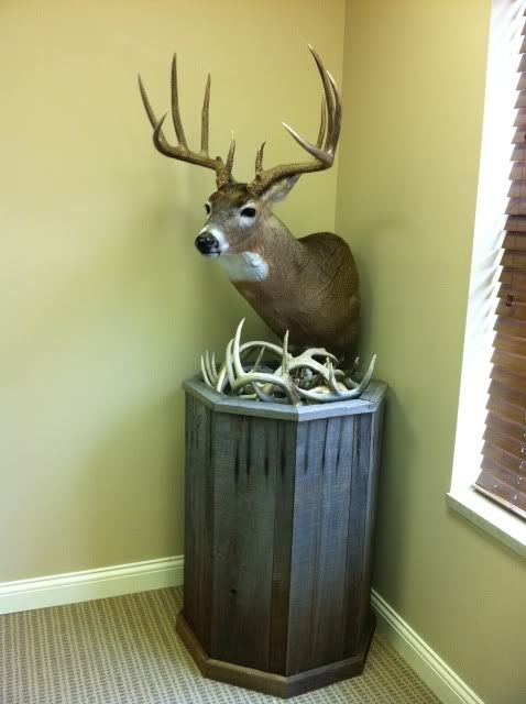 Pedestal Mount Deer Pics: this is an example of the type of low to the ground mount he wants