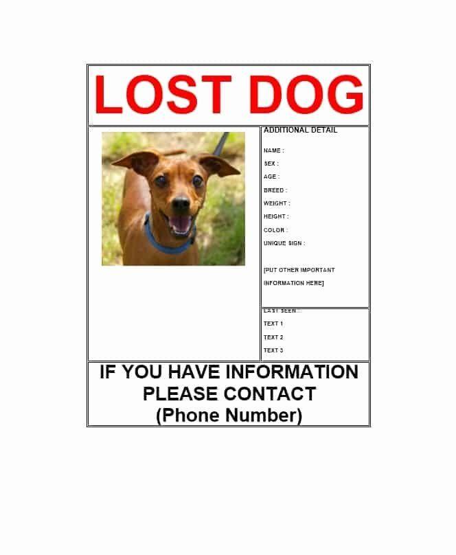 Blue Missing Dog Poster Losing A Dog Dog Template Dog Poster