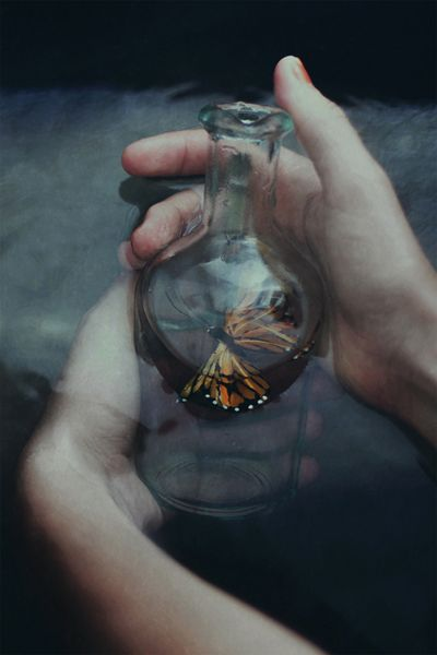 Cosas de quita y pon,  mariposas de sangre marrón,  cardenales en los funerales  de mi corazón. ♫♪♫ Sabina ♫
