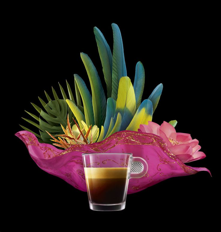 Coffee by Fulvio Bonavia #coffee #composition #feathers #colorful #stilllife #photography