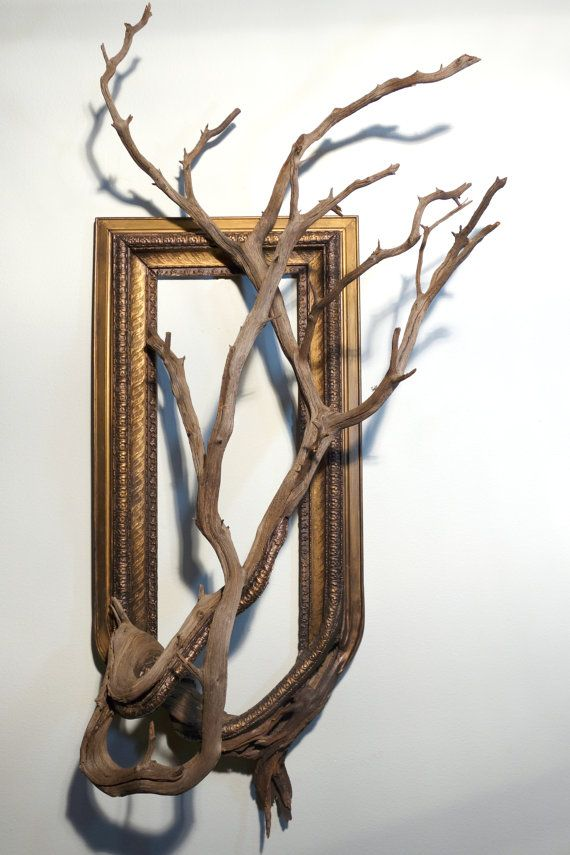 Fusion Frame Tree Branch Art - Archie: Antique Wood & Gesso Frame with Grafted Manzanita Branch
