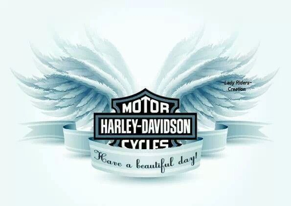 By Lady Rider Creations On Fb Harley Davidson