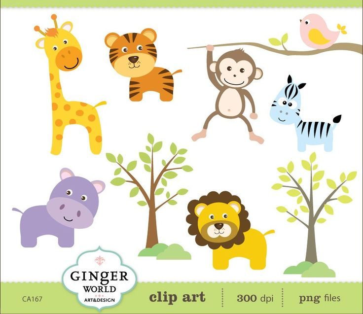 clipart jungle safari - photo #13