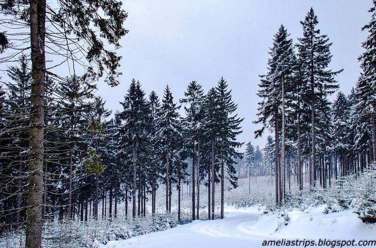 Przystanek Wrocław: Zimowe Góry Sowie