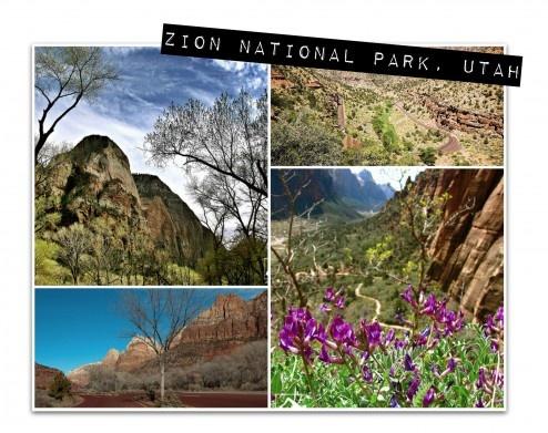Zion National Park, Utah - photo collage