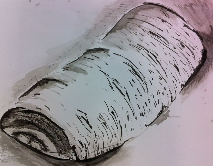 Piece of carrot acrylic ink drawing/painting by Gaylene Allam 25/7/16 class exercise