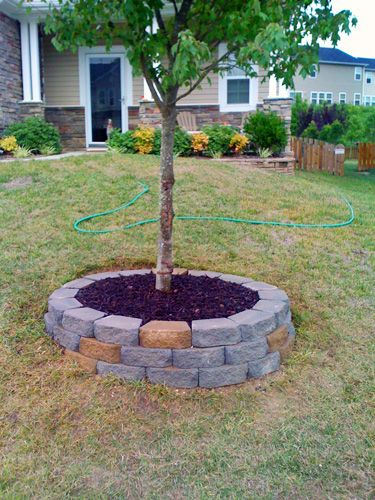 Landscaping Around Small Trees : Wall around trees on a tree and diy retaining