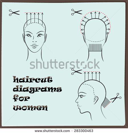 Hairdressing Haircut Diagram For Women Haircuts Hair Cuts
