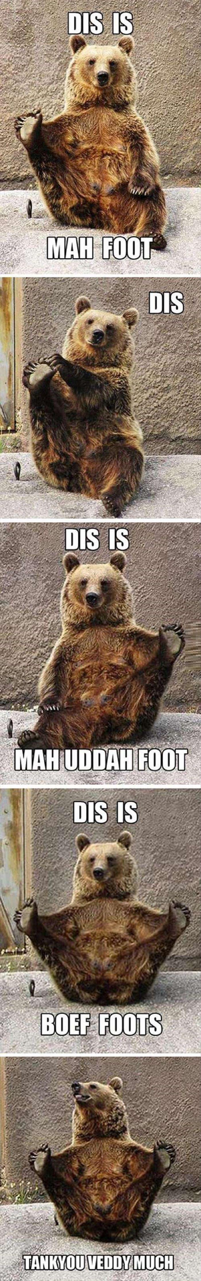 Bear Anatomy