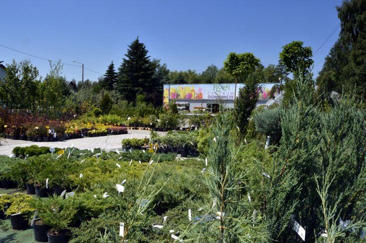 Widok centrum ogrodniczego
