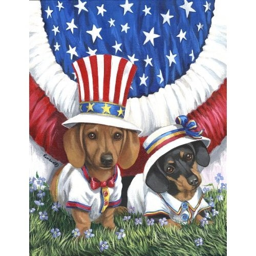 Amazon.com: Dachshund USA Garden Flag: Everything Else